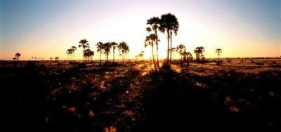 Botsuana, África atardecer