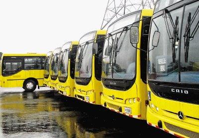 Flota de modernos autobuses.
