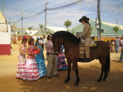 Caballos en la Feria de Córdoba