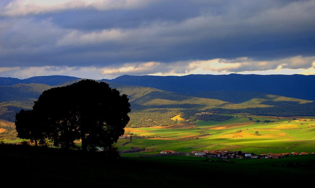 Campo del País Vasco