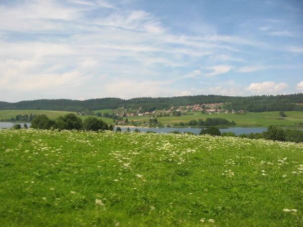 Campo de Suiza