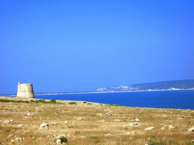 Cap Berbería en Espalmador