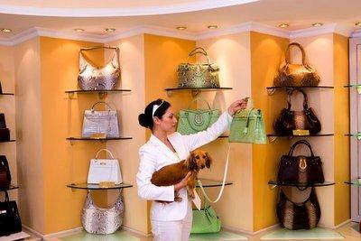Centro comercial Alcampo carteras