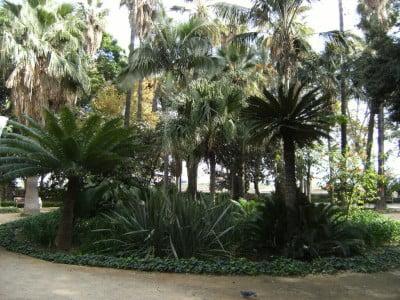 Clima de Málaga