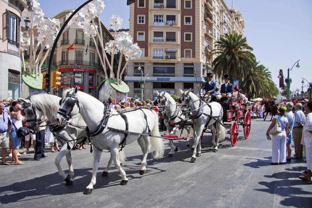 Coches de caballos en Málaga
