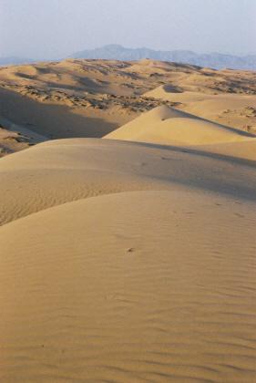 Desierto de Wahiba, Oman