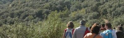 Ecoturismo en Sevilla