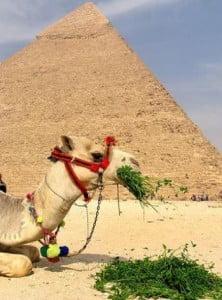 egitpo piramides