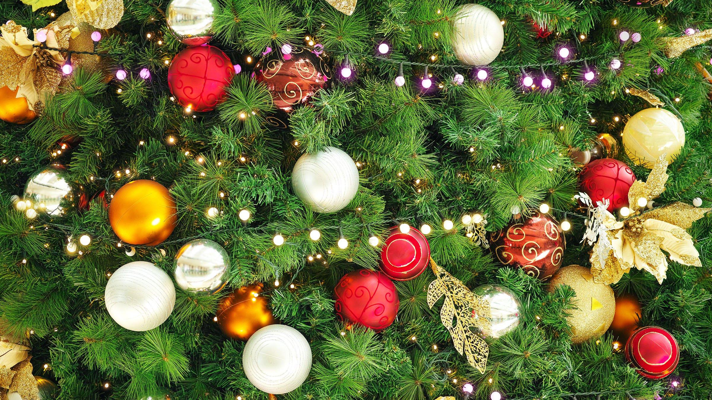 El rbol de navidad un elemento b sico de esta fiesta - O arbol de navidad ...
