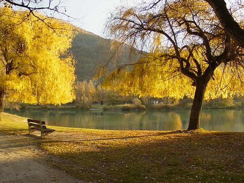 Fotos del parque