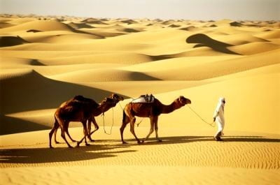 Embajada de Argelia desierto