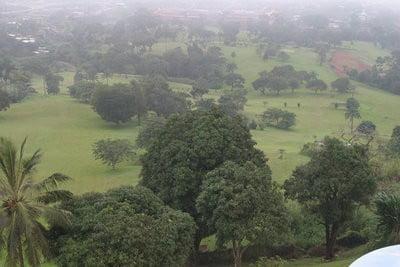 Embajada de Camerún hermosas zonas verdes