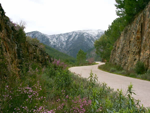 erias-paisaje-montanoso-en-erias