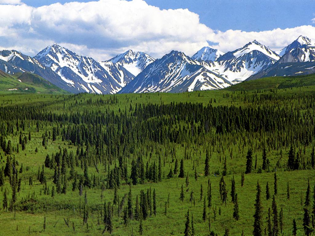 Foto de Alaska