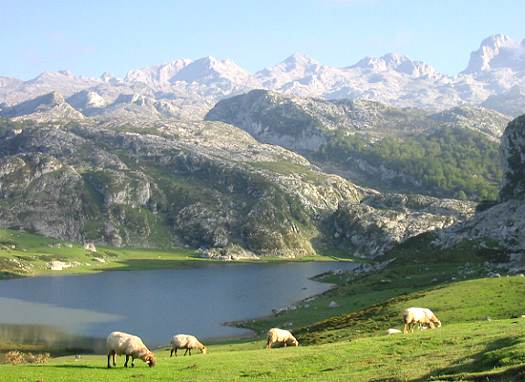 Fotos de Los Picos de Europa