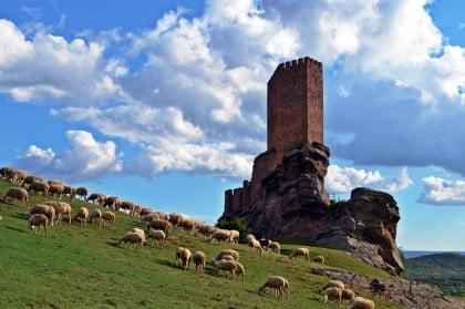 Foto del Castillo de Zafra