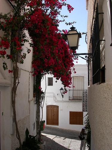 Fotografia de las Calles de Mojácar
