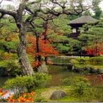 Viajes a Kyoto