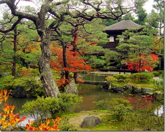 Viajes a kyoto for Jardin kyoto