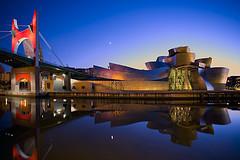 Fotografia del Museo Guggenheim