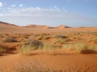 Fotos de Argelia, El Sahara