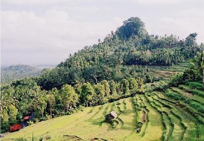 Fotos de la campiña en Indonesia