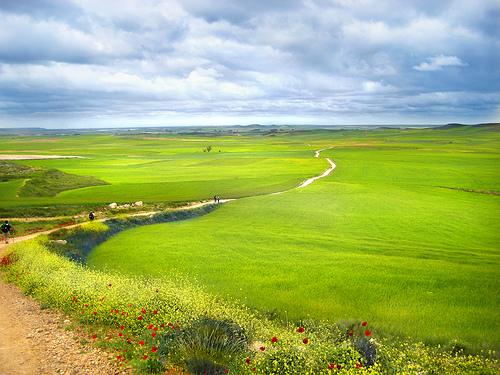 Fotos del Camino de Santiago de Compostela