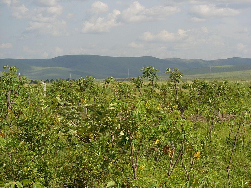 fotos del Congo Paisaje meridional