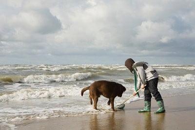 gente en la playa limpiando