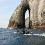 Imagen de la Isla de Malpelo