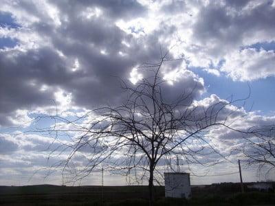 Imágenes del invierno en Huelva