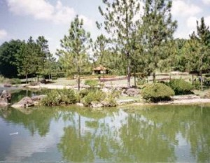 Imagenes del Jardin Botanico de Cuba