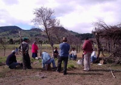 indigenas-en-chile