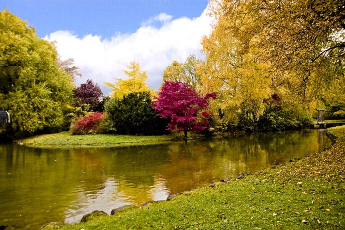 Jardin ingles for Ver jardines