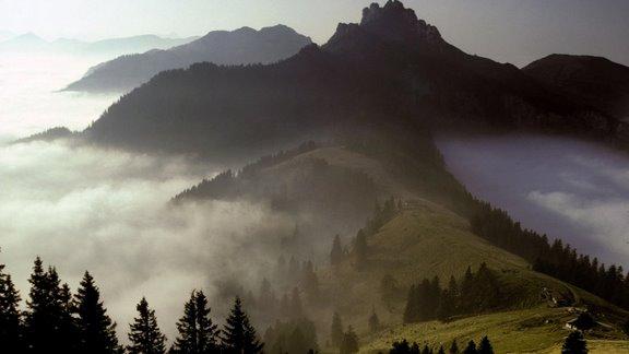 La Pastura Alpina