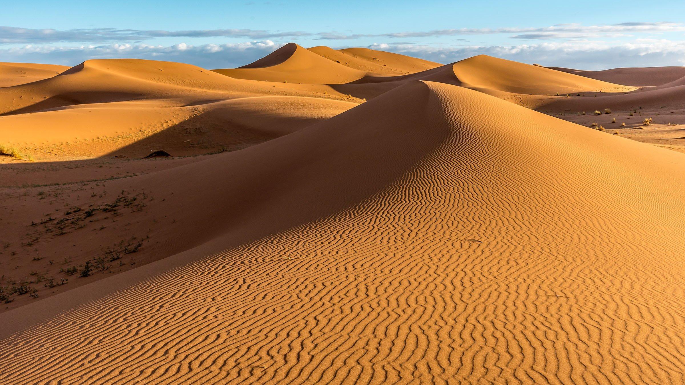 Resultado de imagen de desierto del sahara
