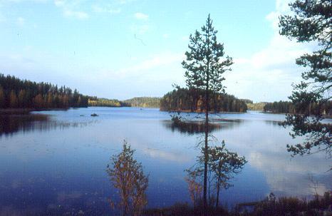 Lago de Laponia