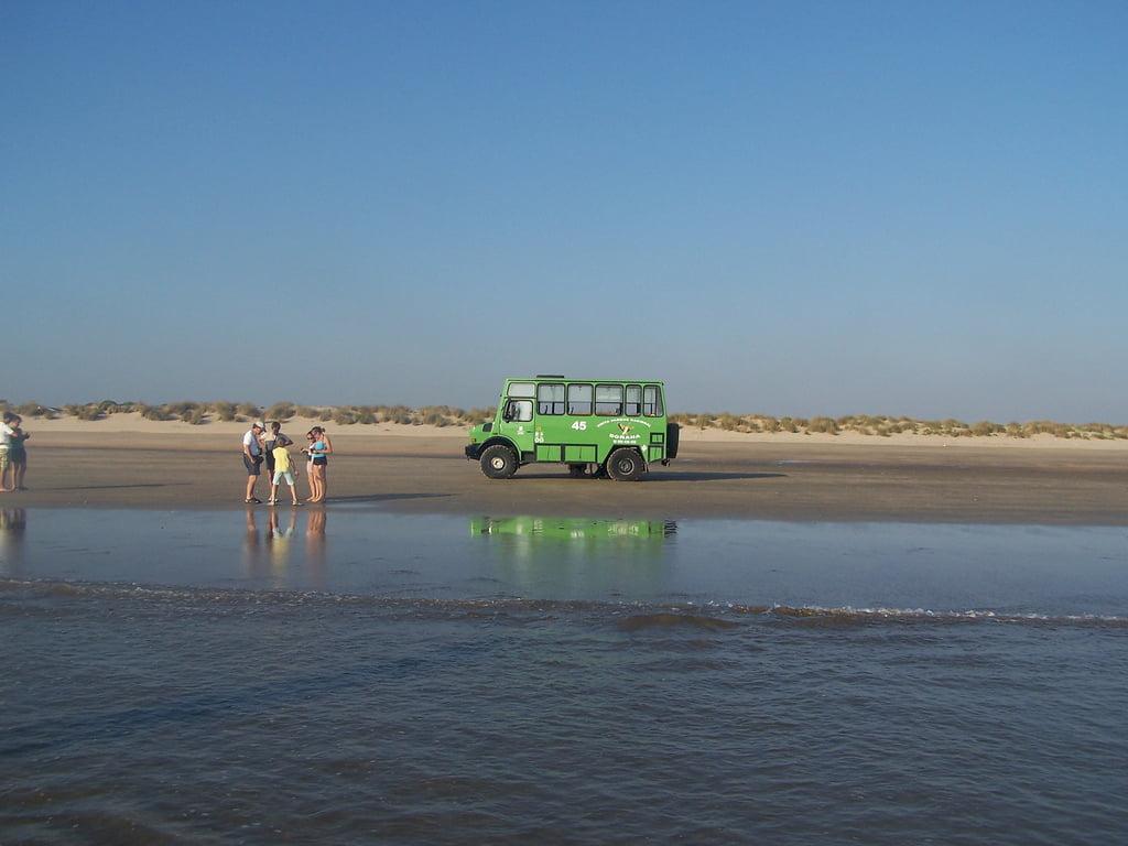 Las marismas de Doñana