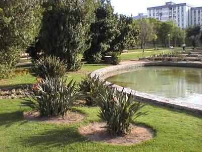 Los parques de Alicante