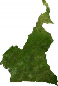 Mapa satelital de Camerún.