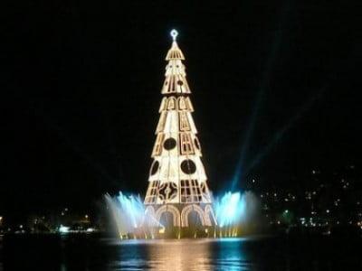 Mejores árboles de navidad
