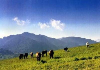 montana-lingshan-beijing