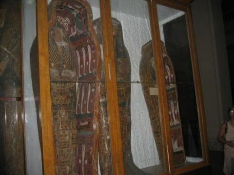 muse-egipto