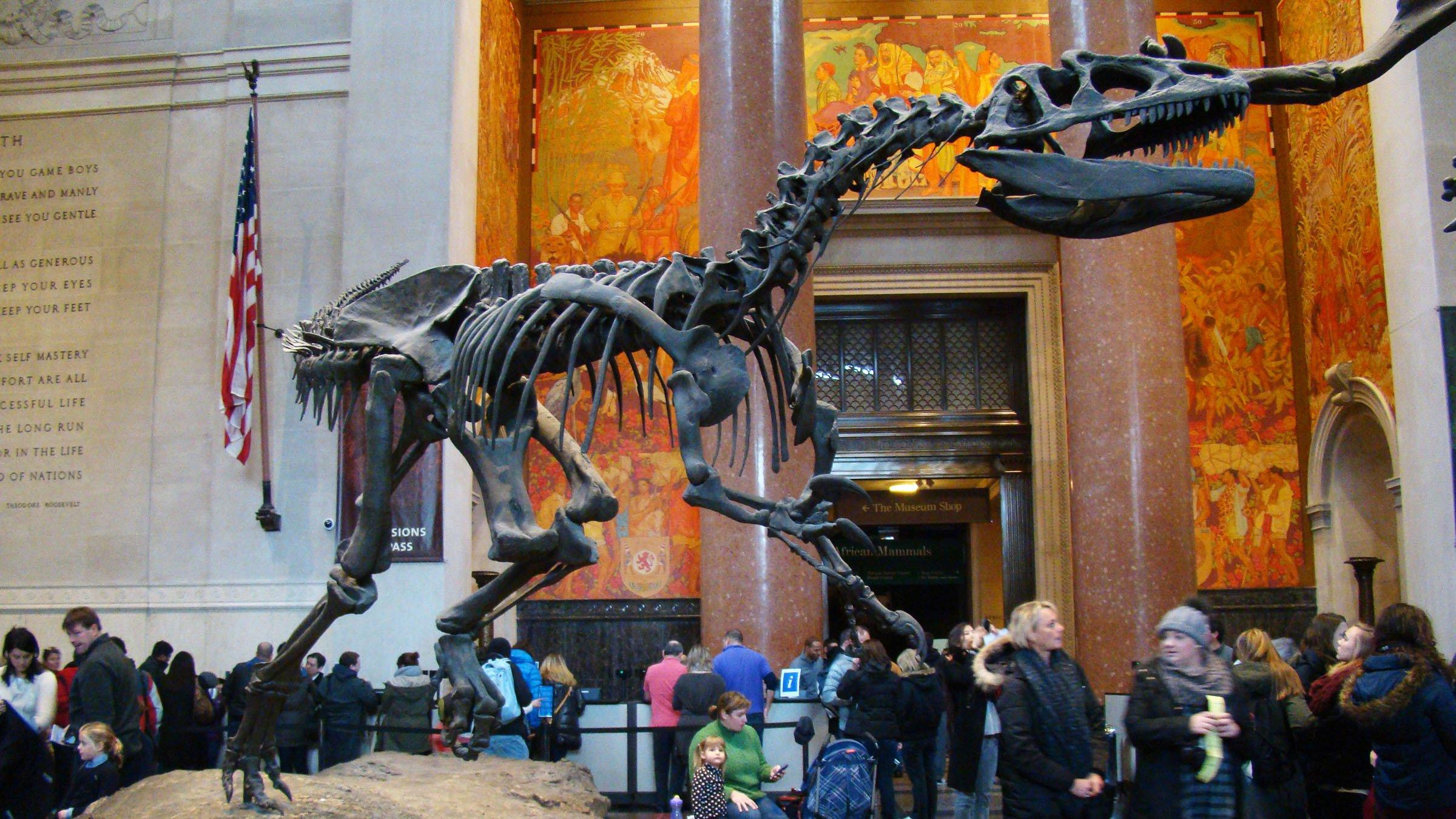 Museo Natural de Nueva York