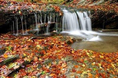 naturaleza España