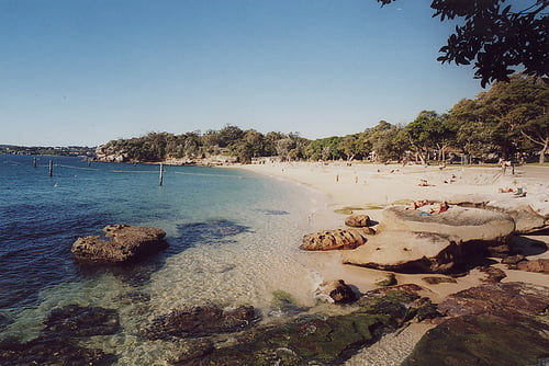Nielsen Park Beach