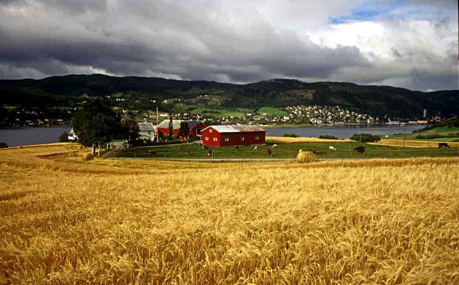 Norte de Noruega