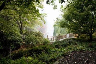 paisajes de naturaleza Portland park