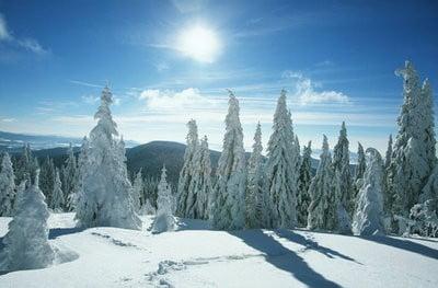 paisajes de nieve con sol