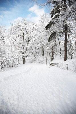 paisajes de nieve en Canadá